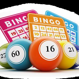 Bingo uitslagen 2020